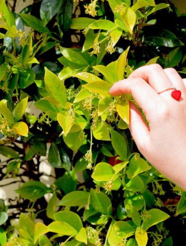 Bague pampille petit cœur rouge et anneau en argent ajustable